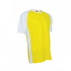 QD3604 Yellow/White