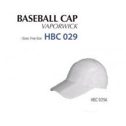 HBC 029A