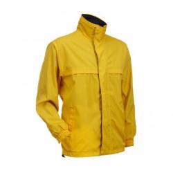 WR0104 Yellow/Black